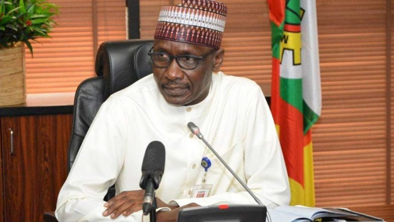 'FG aggressively developing gas-to-power infrastructure, exploration'