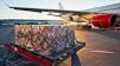 Air freight market shrinks, records unprecedented loss