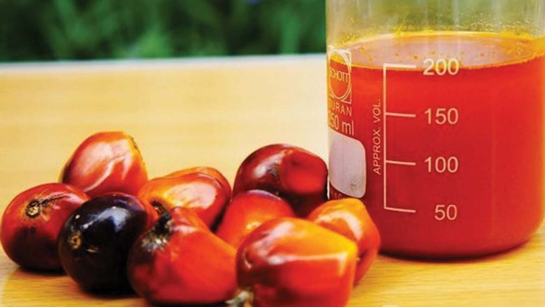 Nigeria loses N270 billion to palm oil import in three years