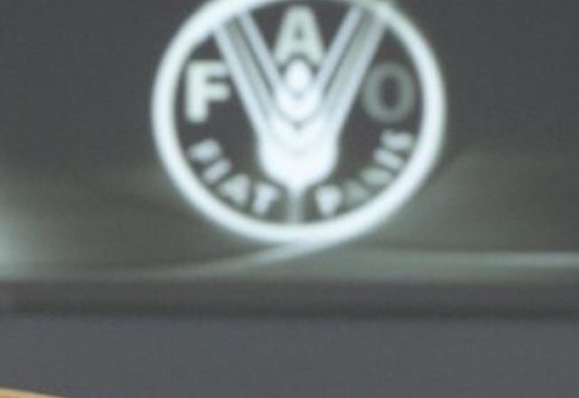 FAO warns against food supply chain disruption as countries lock down