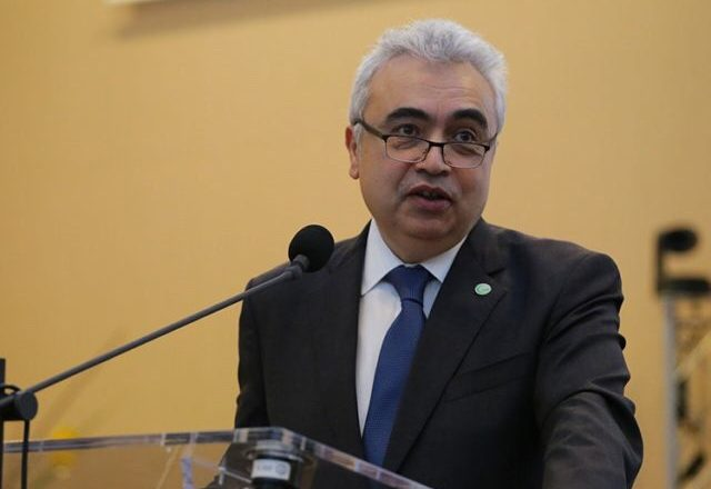 IEA worried about OPEC's capacity to save oil market