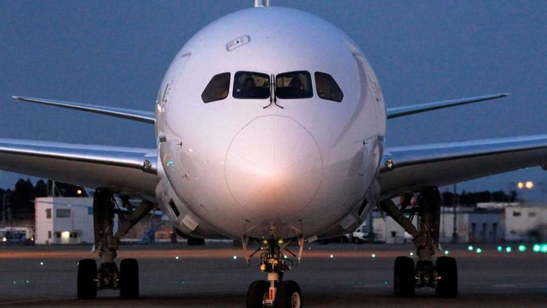 'Local sector needs strong airlines, over 10 aircraft per carrier'
