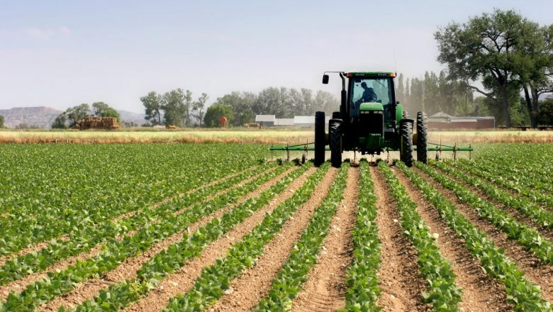 Stakeholders chart path to boost agriculture through green financing