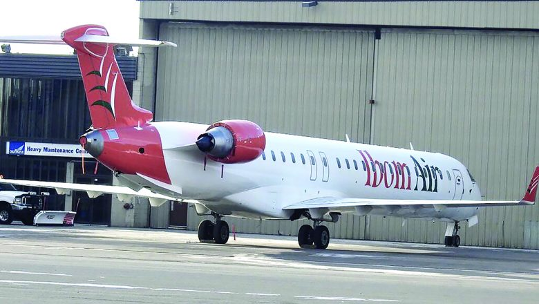 Local airlines to roll out common ticket under interline pact