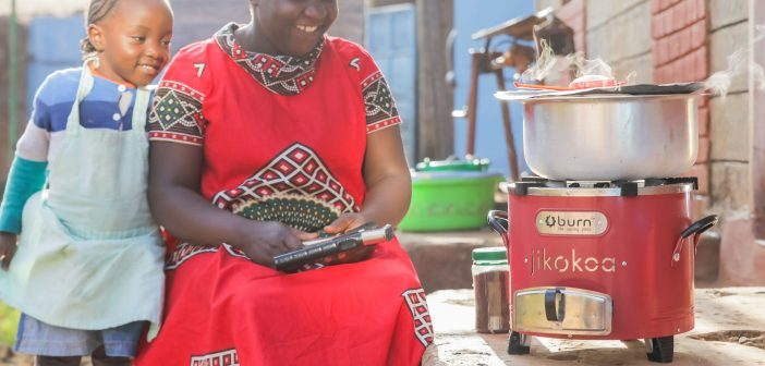 Meet the African companies making pioneering strides in the carbon credits space