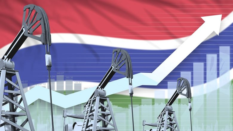 The Gambian Ministry of Petroleum and Gambia National Petroleum Company to Participate in MSGBC 2021 Oil, Gas & Power Conference