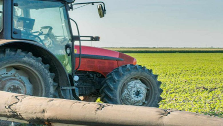 Nigeria: Federal and state governors endorse Special Agro-industrial Processing Zones Programme: African Development Bank and partners to mobilize $520 million for Phase 1